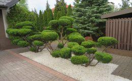 ogród Wawer (4)